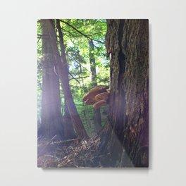 Twilight Fungus Metal Print
