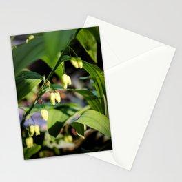 Solomon Seal Hidden Flowers, Botanical Fine Art Print, Nature Art Stationery Cards