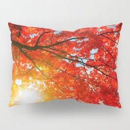 Fall...ing in love with fall. -II.- Pillow Sham