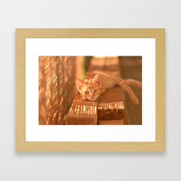 What Do You Want? Framed Art Print