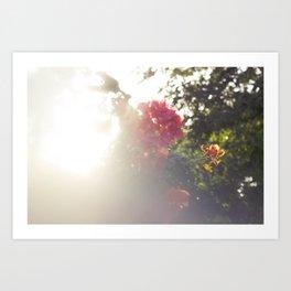 Tropic Blurs Art Print
