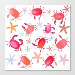 Beach crabs and sea stars Canvas Print