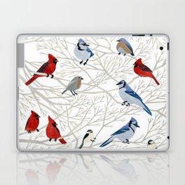 Winter Birds Laptop & iPad Skin