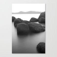 Bonsai B&W Canvas Print