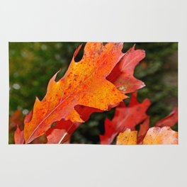 leaves in Autumn Rug