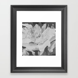 Untitled 20170317p (Arrangement) Framed Art Print