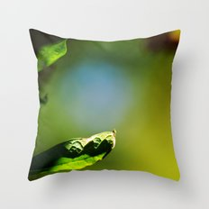 Days of Antique Youth Throw Pillow