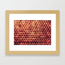 Hi Honey (Beehive) Framed Art Print