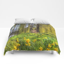 Daffodils and Willow Tree Comforters