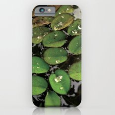Mini Water Lilies and Water Bug iPhone 6s Slim Case