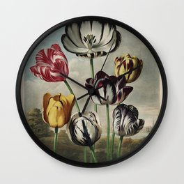 Reinagle, Philip (1749-1833)  - The Temple of Flora 1807 - Tulips Wall Clock