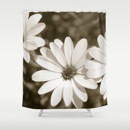 Monochrome Daisy - Botanical Photography Shower Curtain