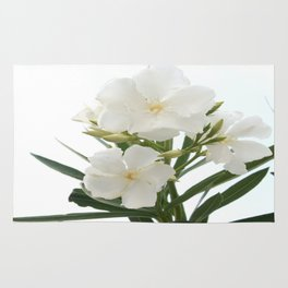White Oleander Flowers Close Up Isolated On White Background  Rug