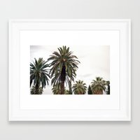 palms Framed Art Prints featuring PALMS by natalie sales