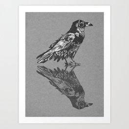 Raven Grey Art Print