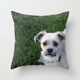 Fudge Throw Pillow
