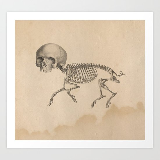 Chupacabra old illustration Art Print