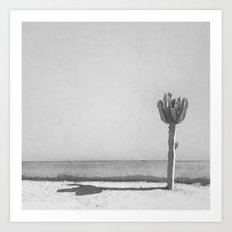 Cactus - in Black & White Art Print