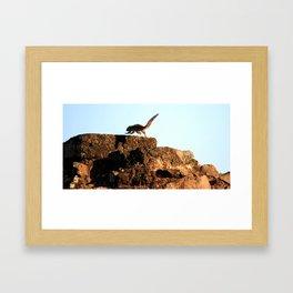Chipmunks Framed Art Print
