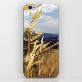 Panorama iPhone Skin