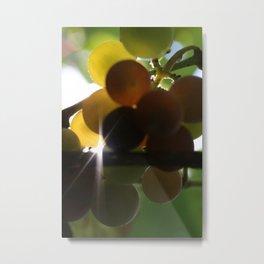 Grapes 3 Metal Print