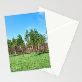 Beautiful young forest in summer day Stationery Cards