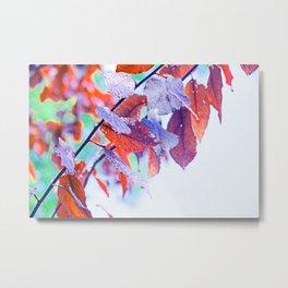 Raindrops on Autumn Leavs Metal Print