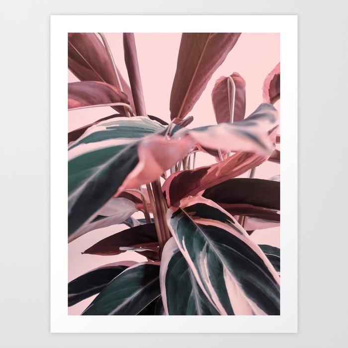 Delicate Leaves #1 Art Print