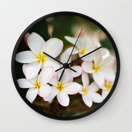 White Plumeria Cluster Wall Clock