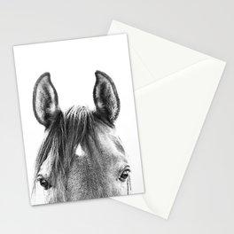 peekaboo horse, bw horse print, horse photo, equestrian print, equestrian photo, equestrian decor Stationery Cards