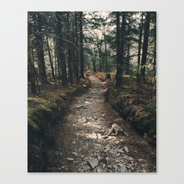 Mount Sterling Trail Canvas Print