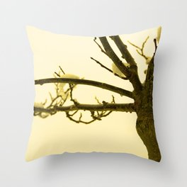 Snow settled on a bare tree Throw Pillow