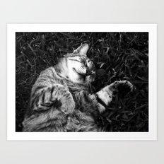 Dreaming of jamón Art Print