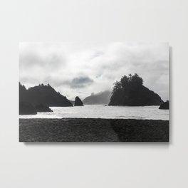 Trinidad State Beach Metal Print