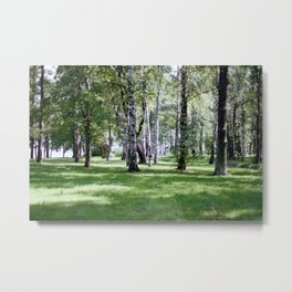 Peterhof Woods Metal Print
