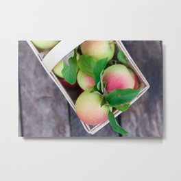 Apples for Pie Metal Print