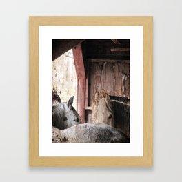 Horses in the Barn on a Rainy Day Framed Art Print