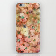 Spring is in the Air 8 iPhone & iPod Skin