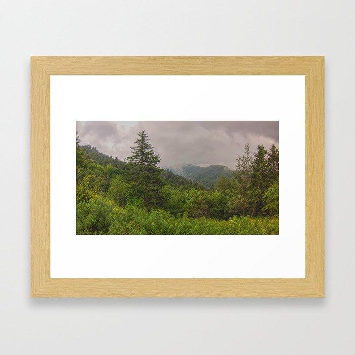 Appalachian Trail - NC/TN Border Framed Art Print