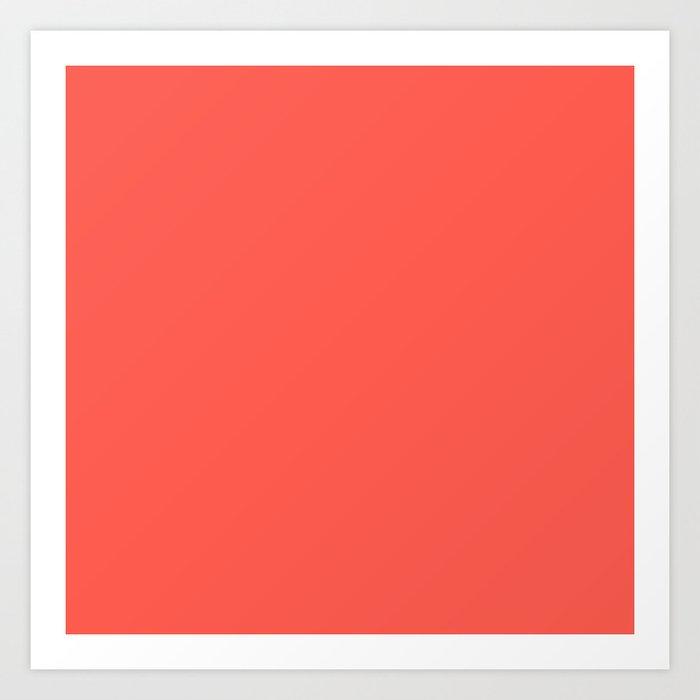 Pink Grapefruit Art Print