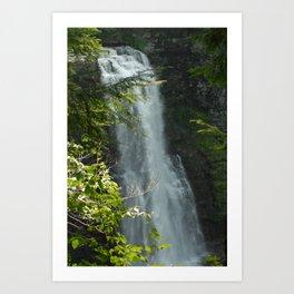 Salmon River Falls Art Print
