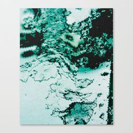 Icy Patch Canvas Print