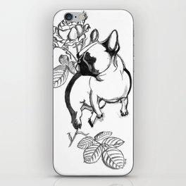 Rosie dog iPhone Skin