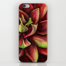 Red Succulent Cactus, Blue Flame Agave iPhone Skin