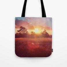 Park Sunset Tote Bag