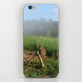 Wallaby in the Mist iPhone Skin