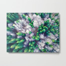 Aerial view of a green and white forest Metal Print