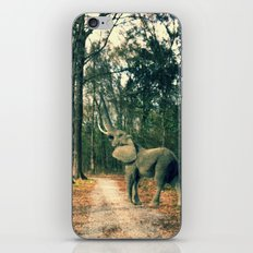 MISPLACED iPhone & iPod Skin