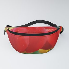 Droplets on red Fanny Pack