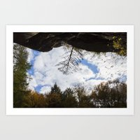 Hocking Hills Tree Art Print